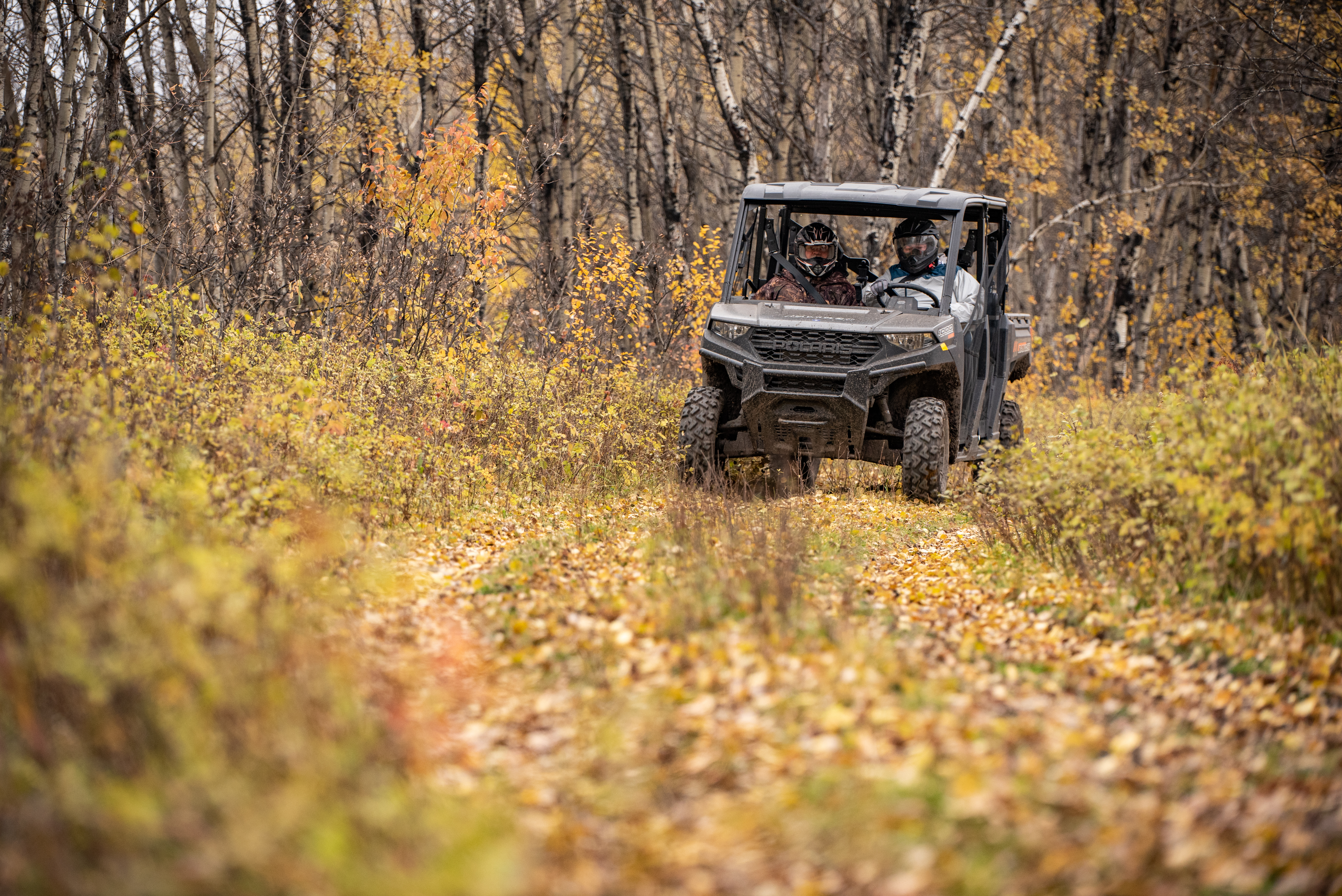 Hunting Birds & Driving UTVs